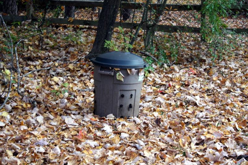 B compost