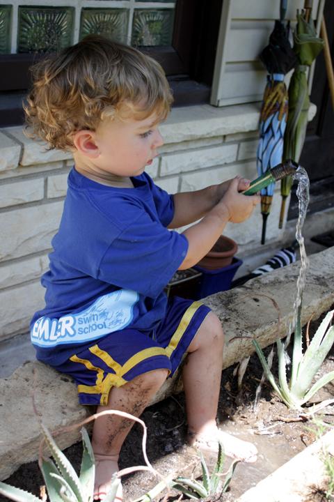 Abe gardening